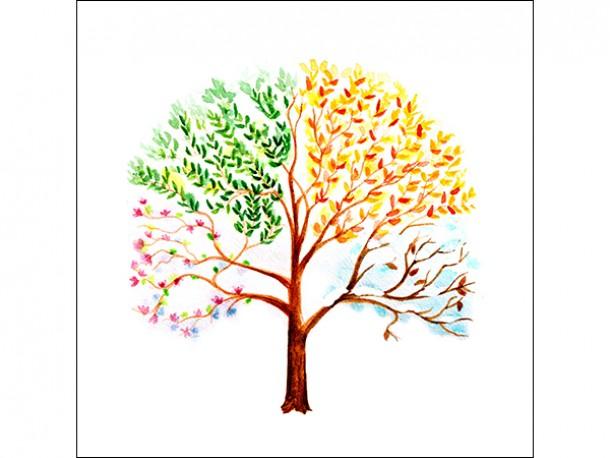 Affiche en vinyle autocollant - L'arbre des saisons