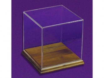 Acrylic Presentation Box