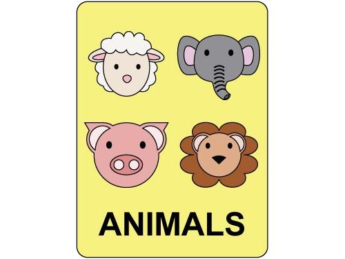 Classification Labels Animals Biblio Rpl Lt 233 E