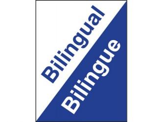 Classification Labels - Bilingual