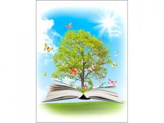 Affiche en vinyle autocollant - Le livre enchanté