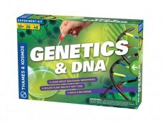 Trousse d'activités sur la génétique et l'ADN