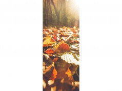 Scratch-and-sniff Bookmarks - Autumn Spice
